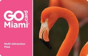 Go Miami Card: ahorrar en Miami