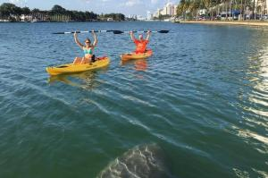 2-hour-single-person-kayak-rental-in-miami-beach-in-miami-beach-373465