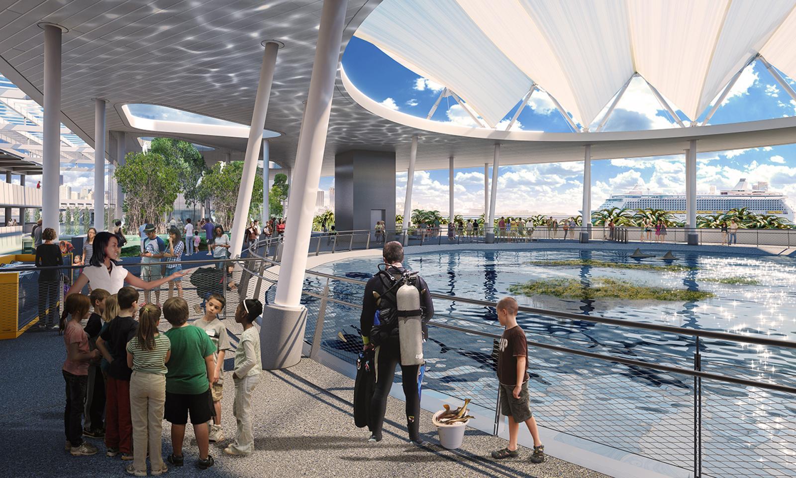 Acuario del nuevo museo de ciencias de Miami