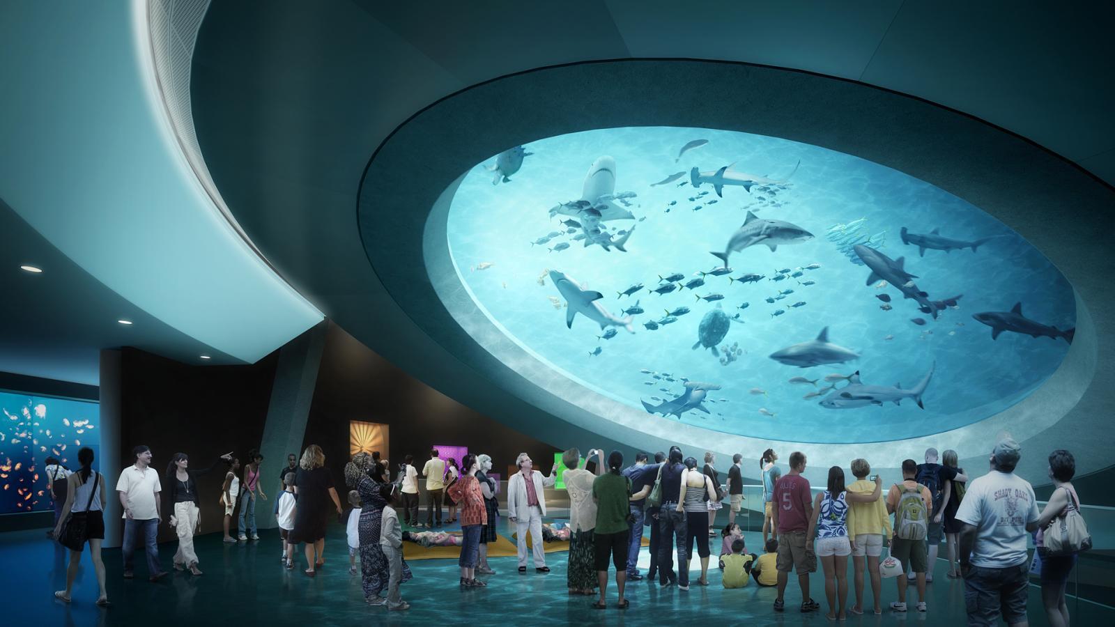 Acuario del Fros Science Museum de Miami