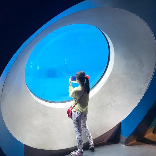 Museo de Ciencias de Miami